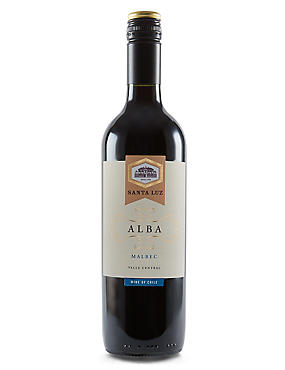 Santa Luz Malbec - Case of 6