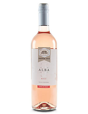 Santa Luz Alba Rose - Case of 6