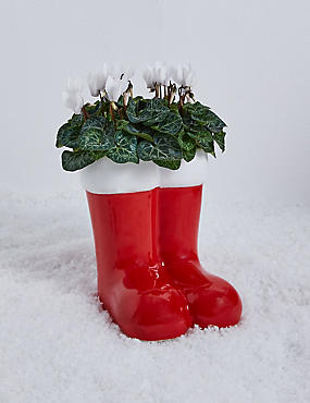 Santa's Flowering Boots