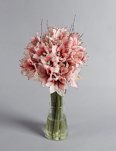The Collection Amaryllis Bouquet
