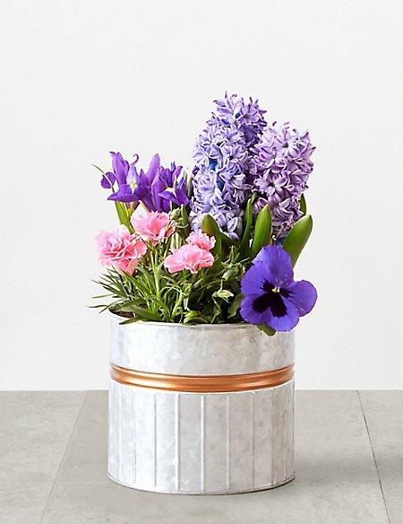 Flowering Watering Can