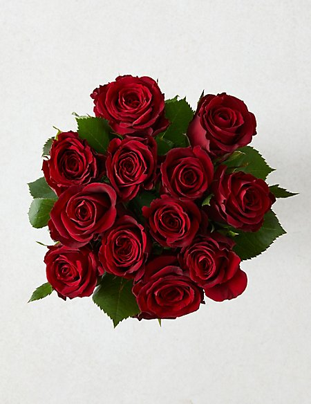 Valentine's Red Rose & Chocolate Selection