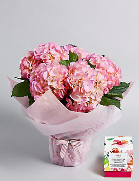 Gift Wrapped Pink Hydrangea with Free Chocolates (Pre-Order: Available from 6th March 2018)