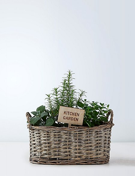 Mum's Herb Crate