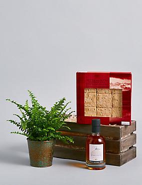Fern Plant, Heritage Whisky & Truffles Hamper