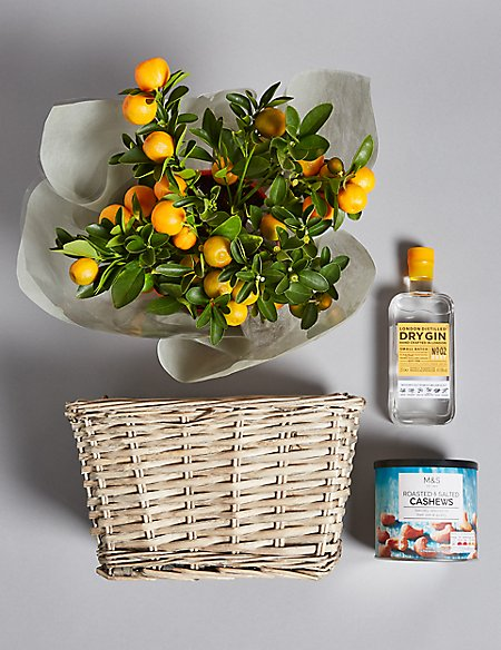 Citrus Tree, London Dry Gin & Roasted Cashews Hamper