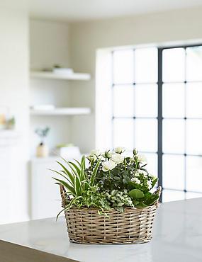 Large Summer Flower Basket