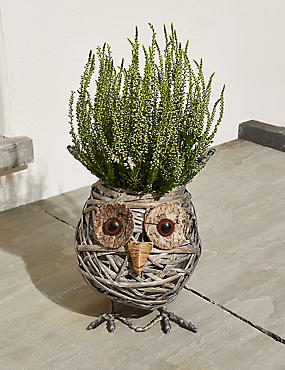 Novelty Owl Planter
