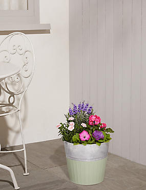 Large Summer Flower Planter