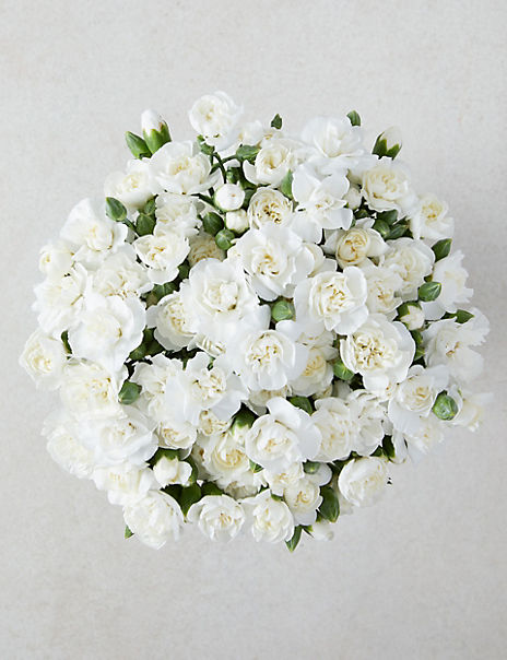 Collection Sweet Avalanche™ Roses Bouquet