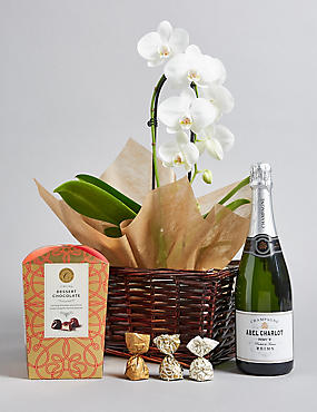 Luxury White Cascade Orchid, Champagne & Italian Chocolates Hamper