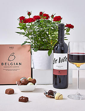 Red Rose Plant, Red Wine & Swiss Chocolates Hamper