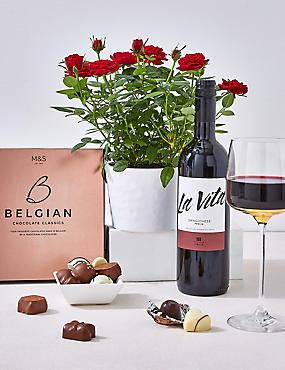 Red Rose Plant, Red Wine & Swiss Chocolates Hamper