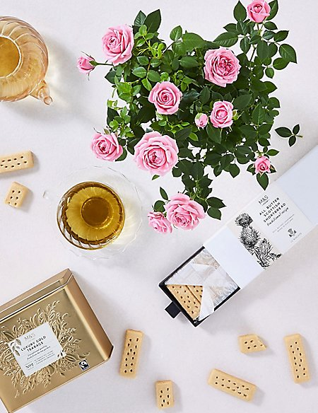 Shortbread Biscuits, Luxury Tea & White Rose Plant Hamper