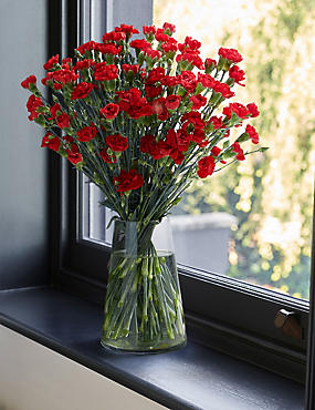 The Collection Chrysanthemum & Brassica Bright Flower Bouquet