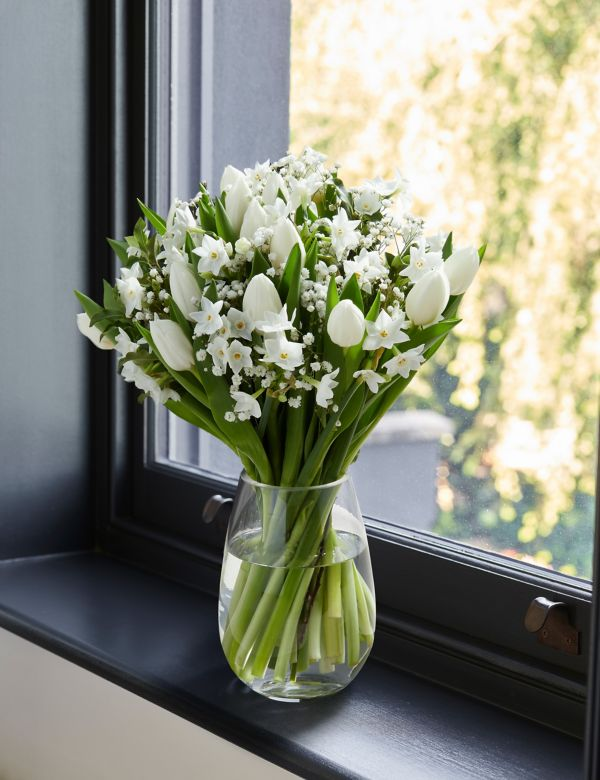 Flowers Plants Online Free Uk Next Day Delivery M S