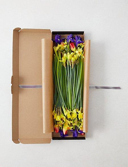 50 Stem Abundance of Spring Letterbox Flowers