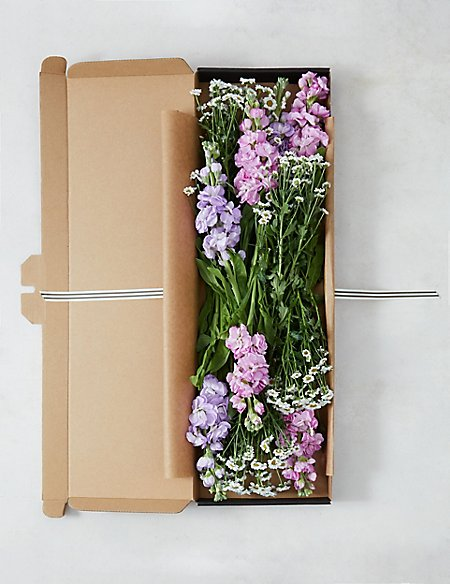 Scented Stocks & Chrysanthemum Letterbox Gift