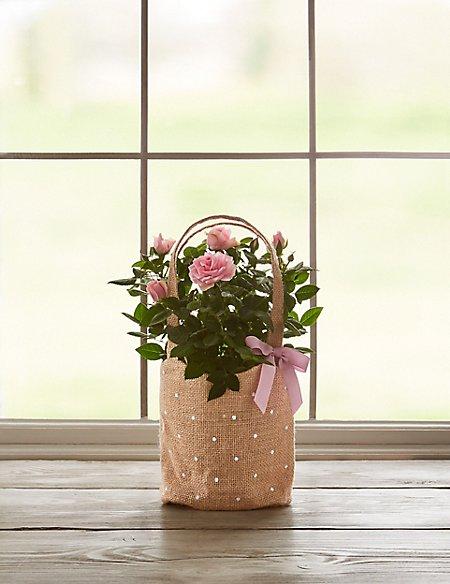 Pink Rose Gift Bag