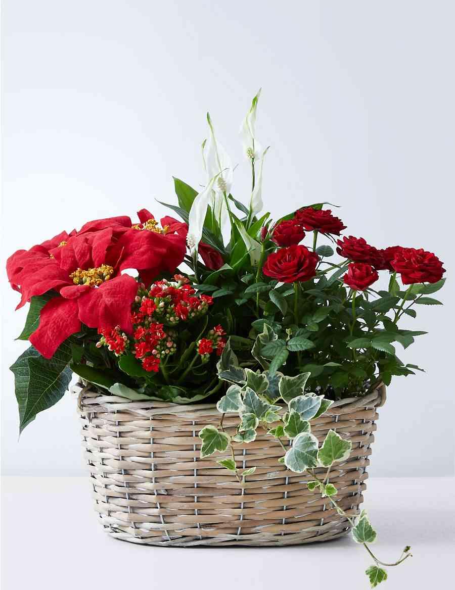 Large Christmas Flower Basket