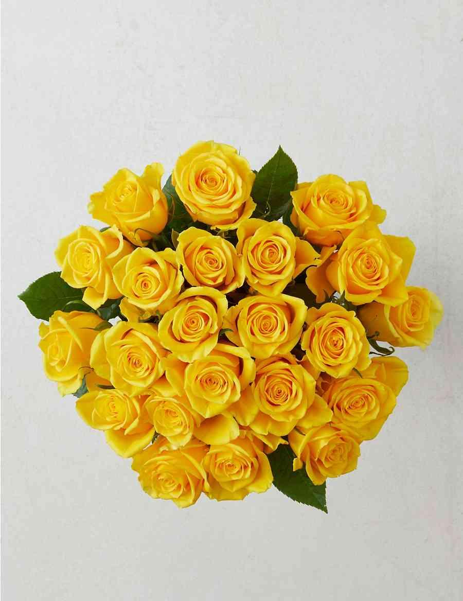 Fairtrade Yellow Rose Bouquet Ms