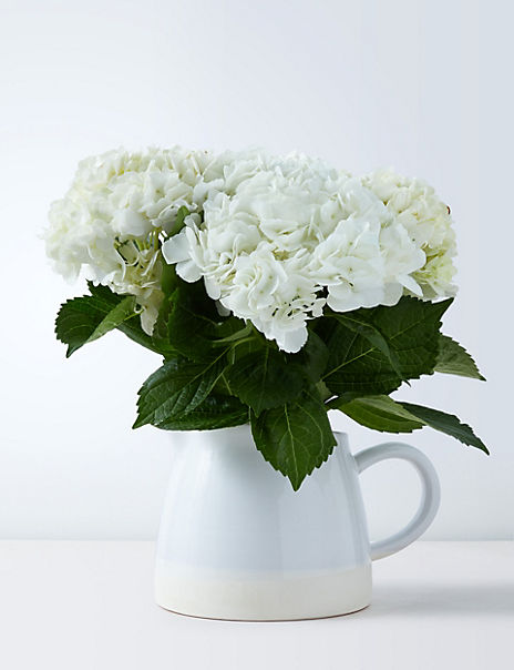 Hydrangea Jug (Delivery from 4th February 2020)