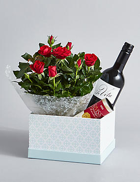 Red Wine, Rose Plant & Swiss Chocolates Hamper