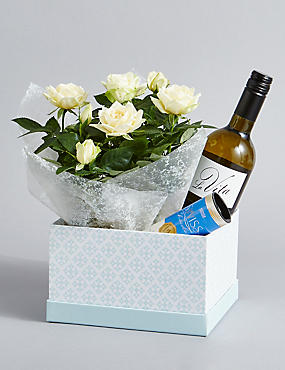 White Wine, Rose Plant & Swiss Chocolates Hamper