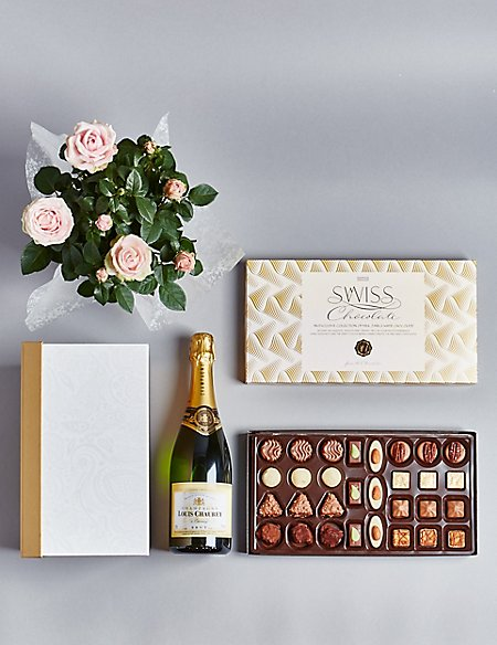 Champagne, Rose Plant & Swiss Chocolate Hamper (Available until 2nd May)