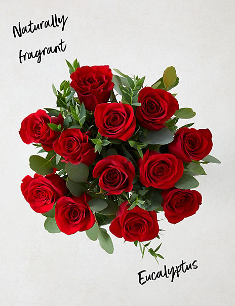 The Collection Dozen Freedom™ Roses Bouquet (Delivery from 10th February 2020)