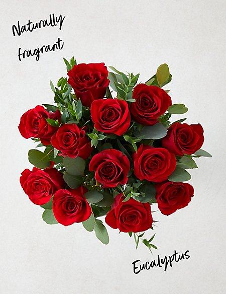 The Collection Dozen Freedom™ Valentine's Roses