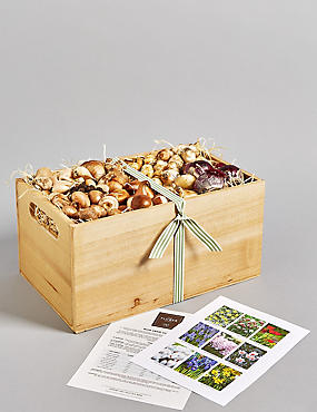 Spring Flower Bulb Crate
