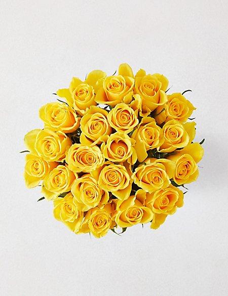 Classic Roses Yellow