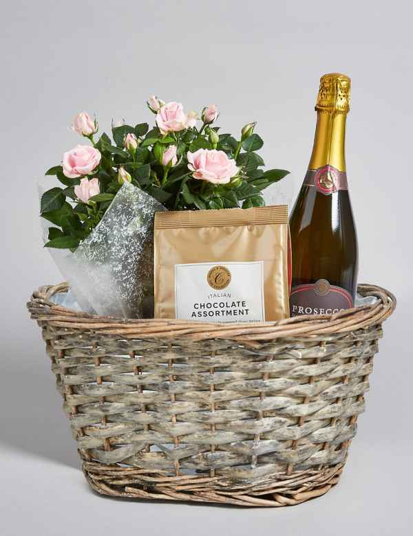Pink Rose Plant Prosecco Italian Chocolates Hamper Free Delivery