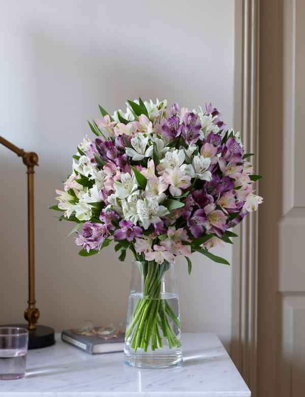 fdc710f0ee35b Alstroemeria Abundance. Sunday Delivery Available