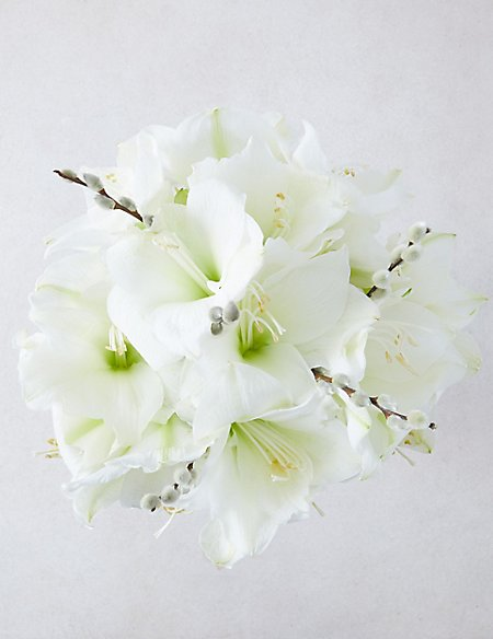 The Collection White Amaryllis Bouquet
