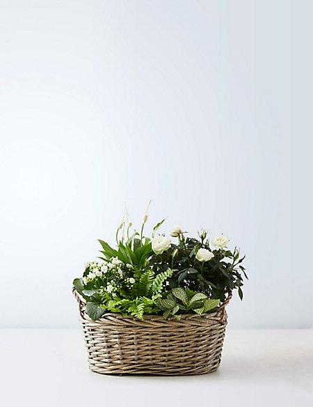 White Christmas Flower Basket