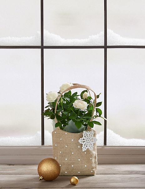 White Christmas Rose Gift Bag