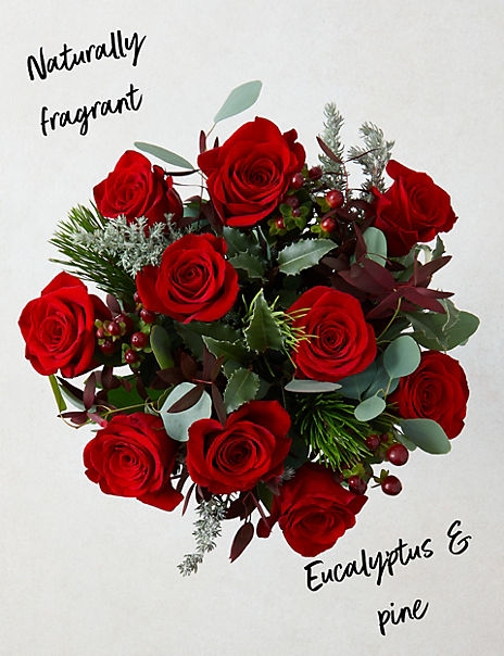 The Collection Christmas Red Velvet Roses