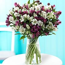 Purple and white alstroemeria bouquet