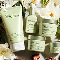 Origins Dr Weil Mega Bright surrounded by flowers and fruits